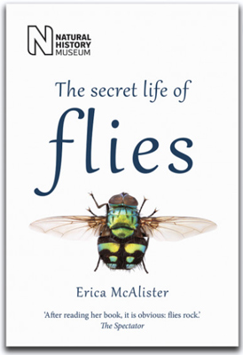 The secret life of flies, by Dr Erica McAlister