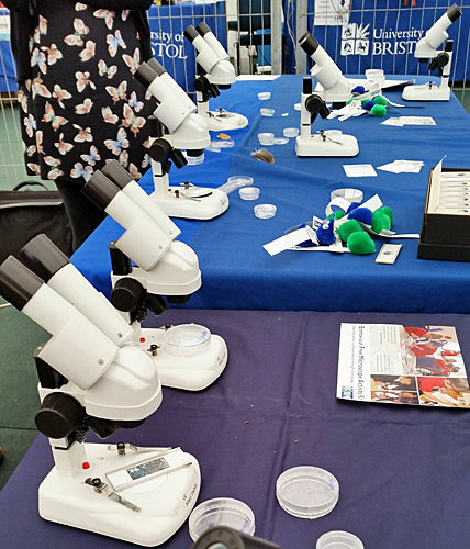 Royal Microscopical Society stand