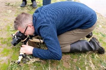 Wim van Egmond imaging marine beetles