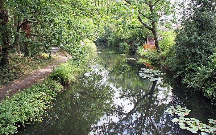 Basingstoke Canal from Sheets Heath Bridge