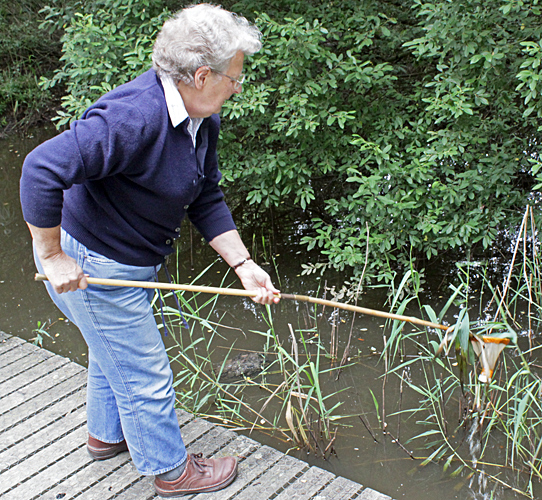 Mary Morris pond dipping