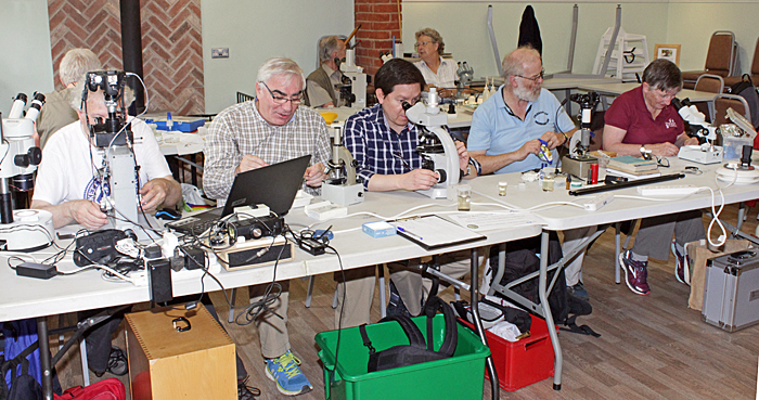 Microscopists in the Visitor Centre