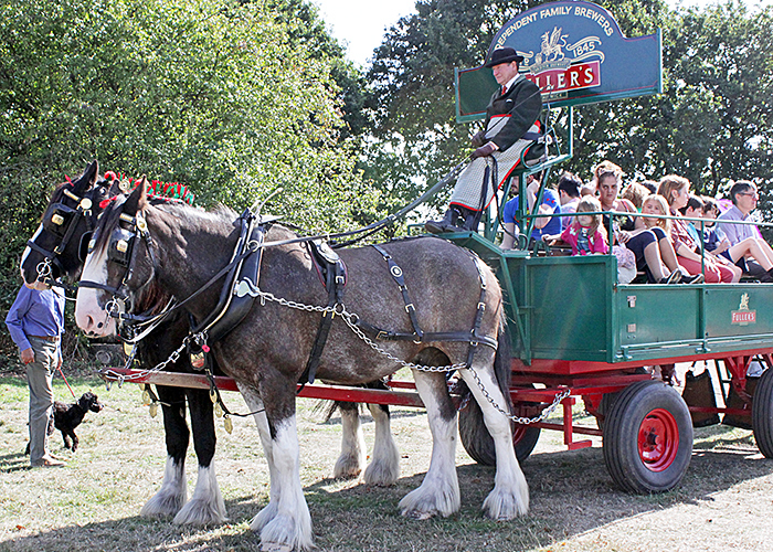 Fuller's Working Dray Horses