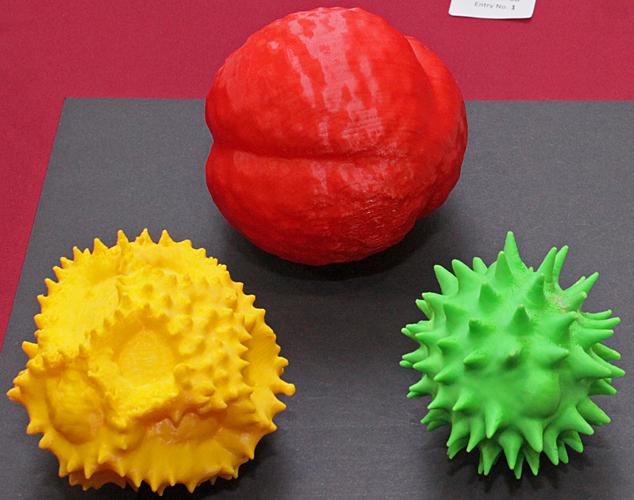 Models of pollen grains