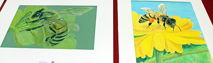 Paintings for judging