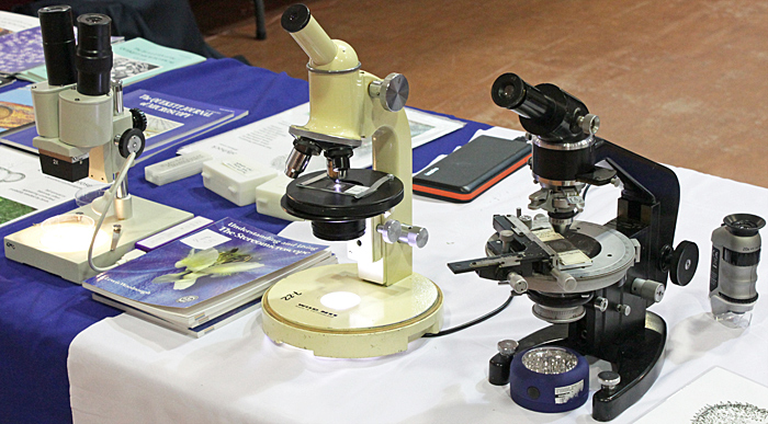 Microscopes on the Quekett stand