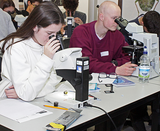 Using microscopes
