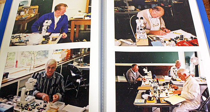 David Tibbs' photo album