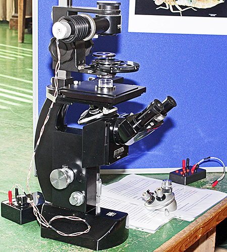 Wild M40 inverted microscope