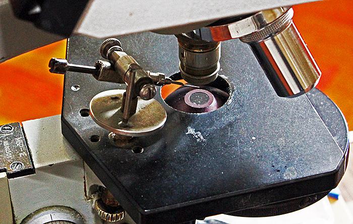 Klaus Kemp's micromanipulator
