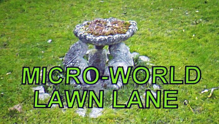 Microworld – Lawn Lane