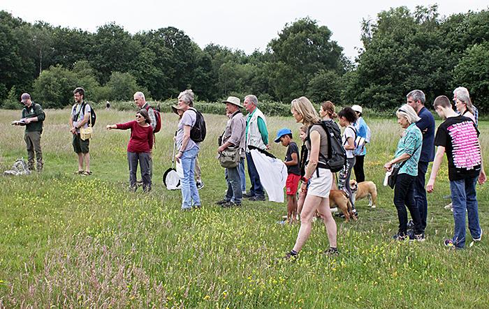 Group on the Plain