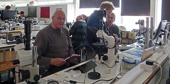 Participants in the laboratory