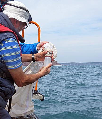 Bottle on plankton net