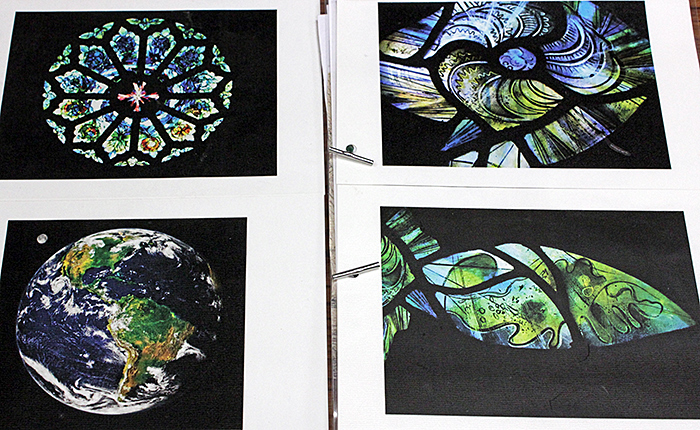 Stained glass with biological designs