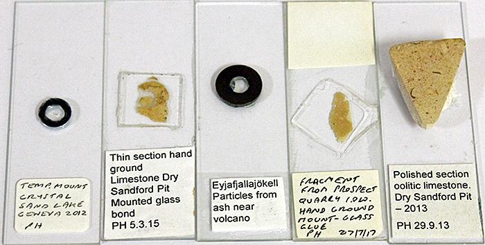 Pam Hamer's slides