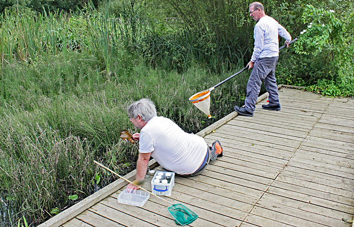 Robert Ratford and Steve Durr collecting from one of the dipping ponds