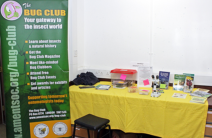 Amateur Entomologists' Society stand