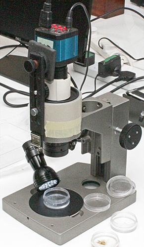 Inspection camera on Olympus stereomicroscope stand