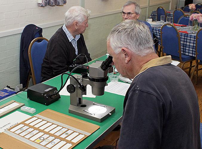 Peter Bracey with John Rhodes' exhibit
