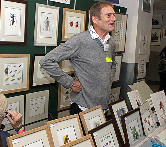 Richard Lewington and his drawings