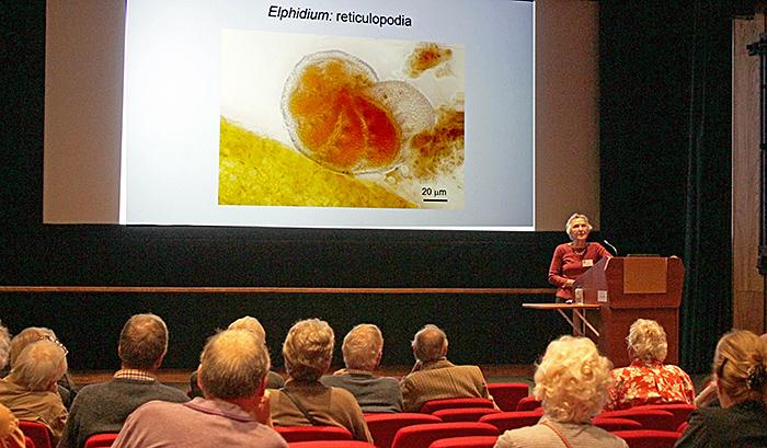 Zaineb Henderson's presentation