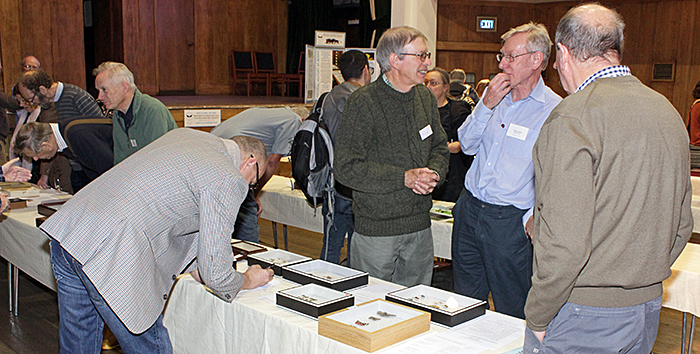 Entomologists with the exhibits