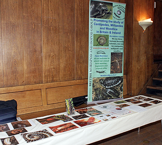 British Myriapod and Isopod Group stand