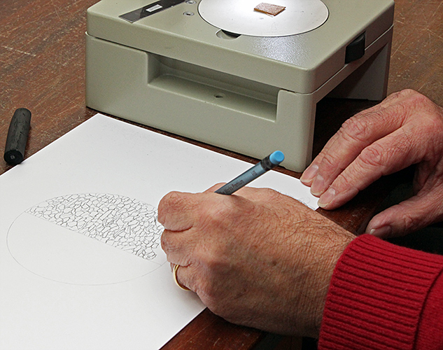 John Tolliday drawing