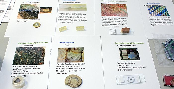 Pam Hamer's specimens and notes