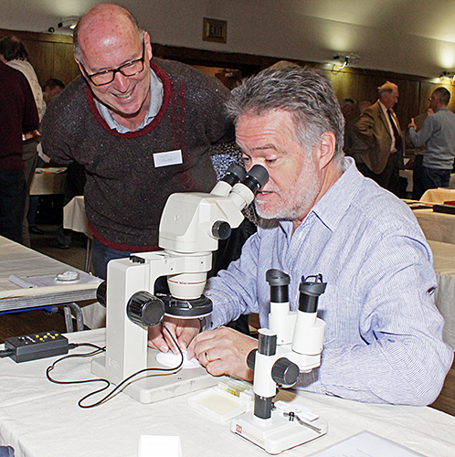 Visitors using our stereomicroscope