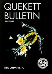 November 2019 Bulletin front cover