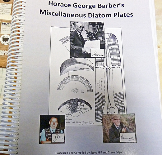 Horace Barber's Miscellaneous Diatom Plates