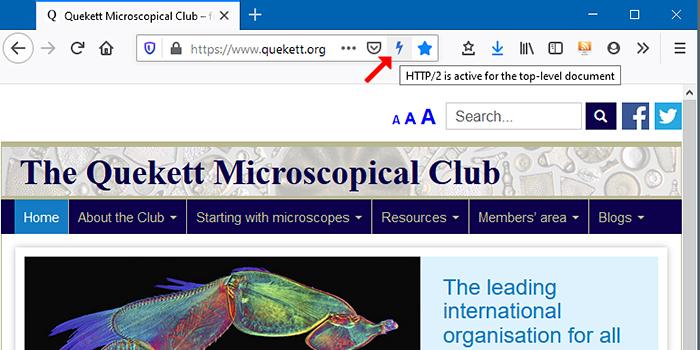 Blue lightning bolt in Firefox browser