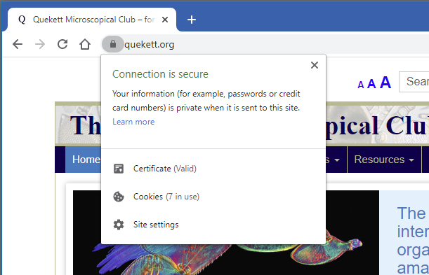 Closed padlock icon in Google Chrome browser