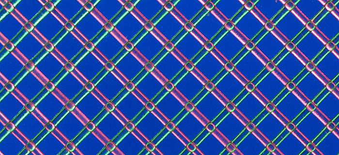 Polyester mesh, Rheinberg illumination
