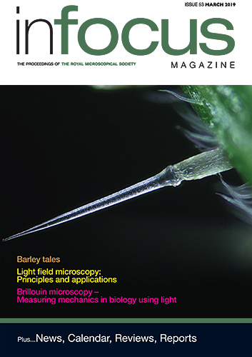 Front cover of infocus March 2019 (issue 53)