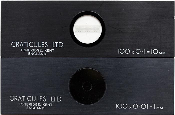 Stage micrometers