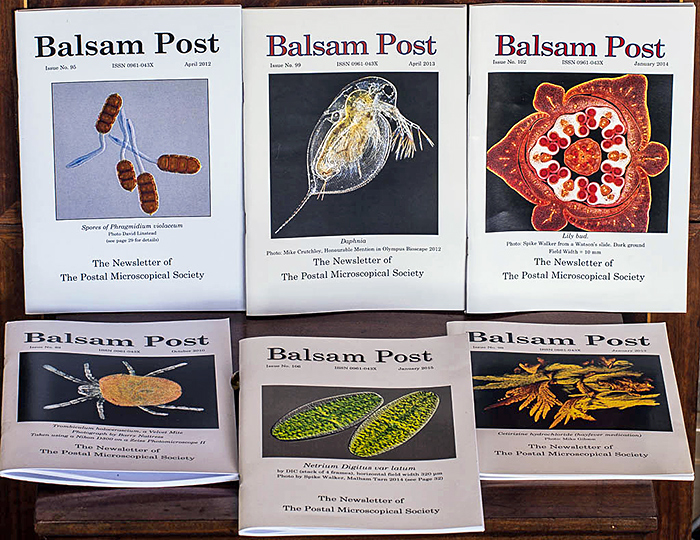 Examples of Balsam Post