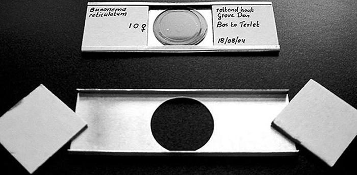 Cobb's aluminium slide holders