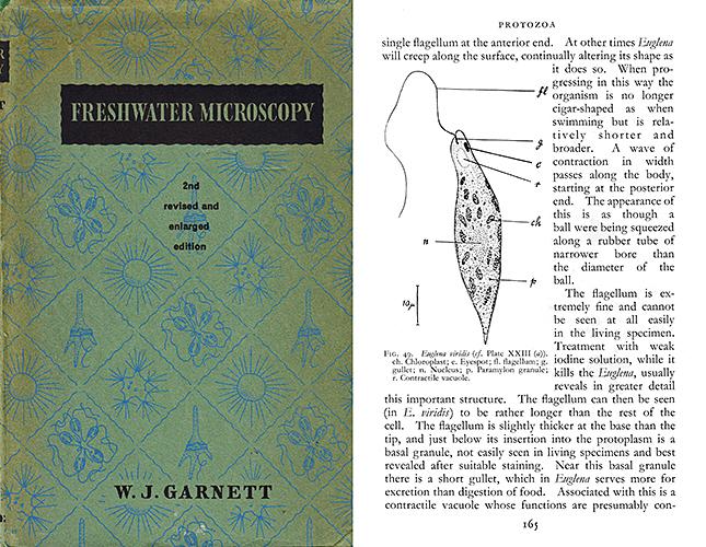 Freshwater Microscopy by W. J. Garnett