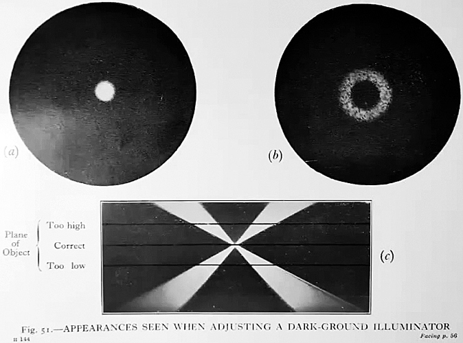 Ray diagram of dark-ground illumination