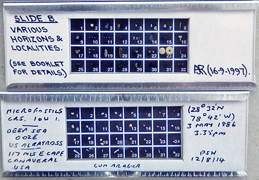 Microfossil slides