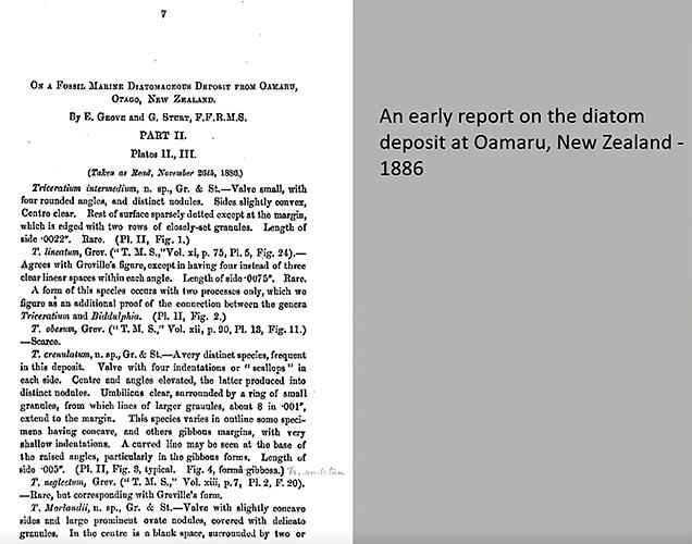 Paper on Oamaru diatoms