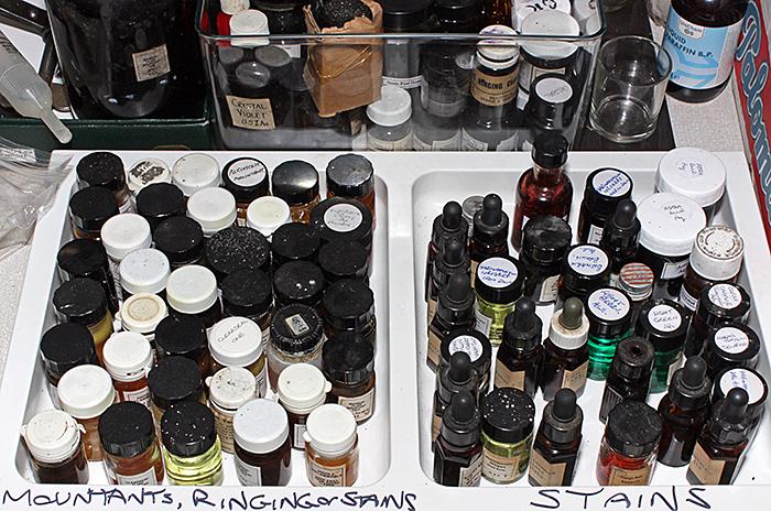 Joan Bingley's chemicals