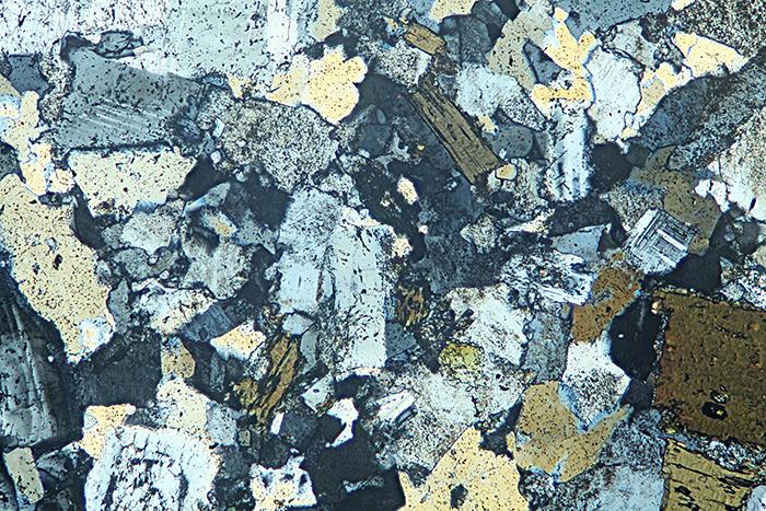 Quartz diorite, crossed polarisers