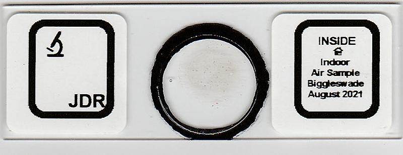 Slide of indoor air sample